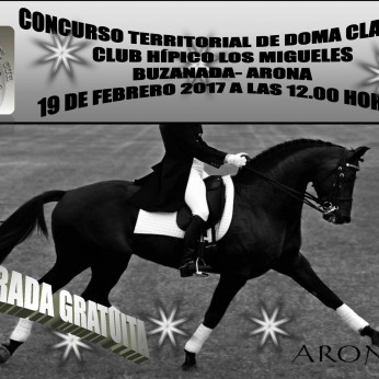 Соревнования по конному спорту (выездке) в Бусанаде