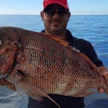 Рыблка на Тенерифе цены